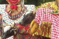 Fortuna de Minas:Bandas, bonecos de Olinda e Boi da  Manta agitam carnaval no Fortuna Park