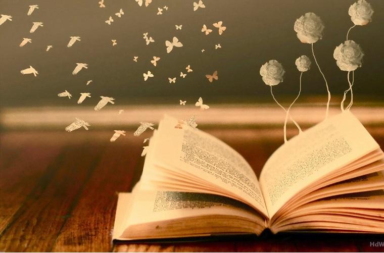 Erika Nogueira: Despertar para a leitura