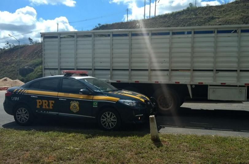 PRF recupera dois caminhões boiadeiros carregados na BR-040