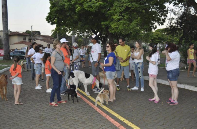 Cãomiada reúne mais de 100 animais no Boa Vista