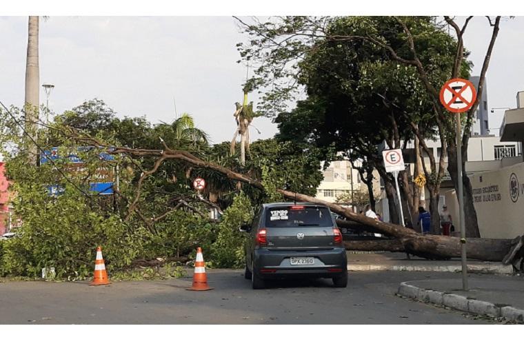 O seguro do seu carro cobre riscos da natureza?