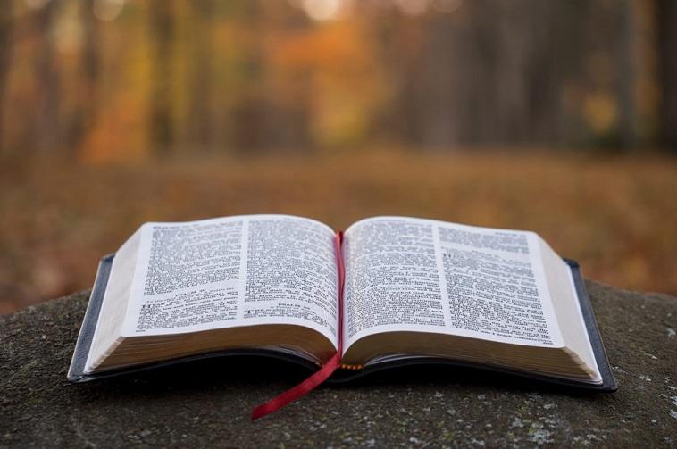 Coluna Evangélica: Boas Novas – Precisamos Saber